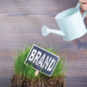 Brand concept. Fresh and green grass on wood background.
