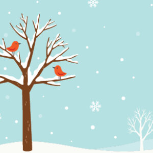 Uproar December 2020. Winter illustration scene with tree and snow with two red cardinals on the branches.